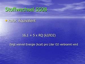 Kcal Berechnen Formel : ppt stoffwechsel ss08 powerpoint presentation id 3219379 ~ Themetempest.com Abrechnung