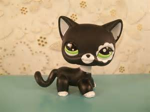 lps cat littlest pet shop images cat 2249 hd wallpaper and