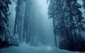 Popular Christmas Background Nature 201