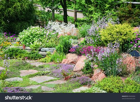 conifers and flowering perennial plants in an alpine rock