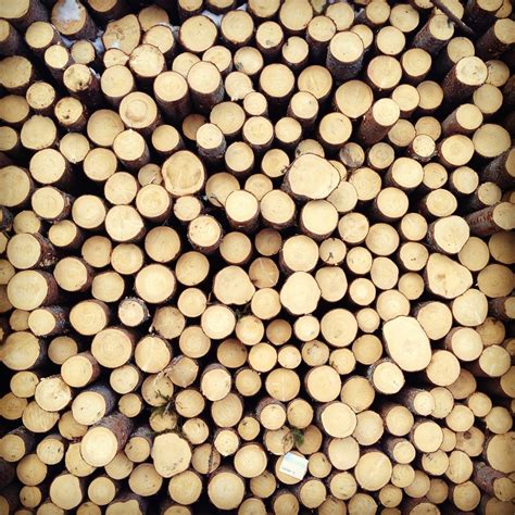How To Build A Wood Burning Fireplace by Stacked Wood Where Is June