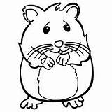 Hamster Coloring Hamsters Printable Sheets Draw Nervous Pet Pets Easy Library Stake Care Stuff Toddler Printables Welcome sketch template