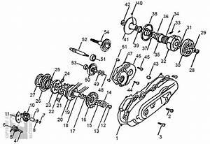 Yamaha 50cc Jog Wiring Diagram