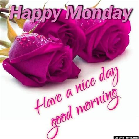 Morning Happy Monday Images Happy Monday A Day Morning Pictures Photos
