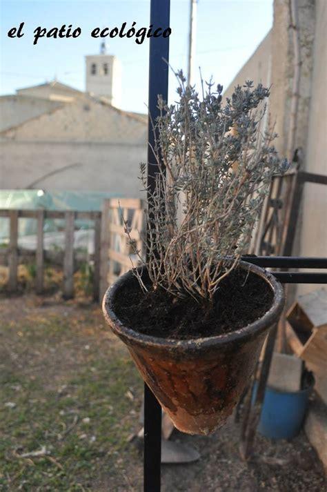el patio ecologico macetas  potes de resina