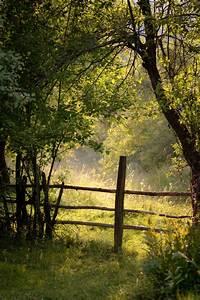 Country Living | Mrs. Inspiration | Naturaleza, Paisajes y ...