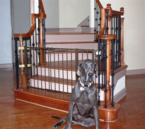 wrought iron decor gate pet gates cardinal gates