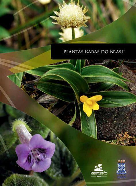 calameo plantas raras  brasil