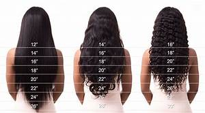 Hair Length Chart Aprillacewigs Com