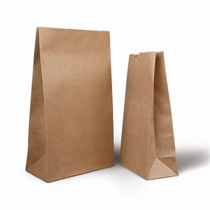 Bag Grocery 1kg Capacity Delivery Paper Bags