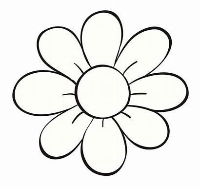 Flores Dibujos Publicidad