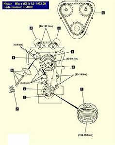 Comment Caler Une Distribution : remplacement courroie d accessoire de pompe a eau micra k11 m canique lectronique forum ~ Gottalentnigeria.com Avis de Voitures