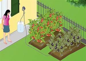 Calcul Arrosage Goutte à Goutte : goutte goutte jardin ~ Melissatoandfro.com Idées de Décoration