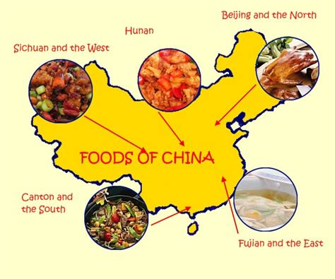 different types of cuisines in the wokking on the run food facts in
