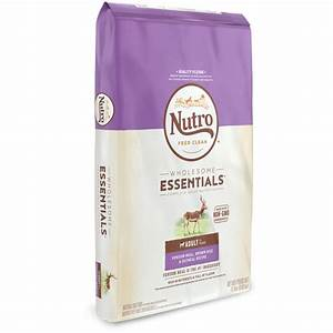 Best natural dog foods nutro tm brands for Best natural dog food