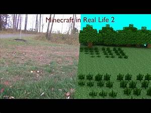 Minecraft in Real Life: THE WITHER - YouTube