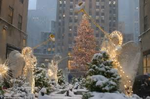 Christmas Tree Rockefeller Center History by History Of The Rockefeller Center Christmas Tree Daily