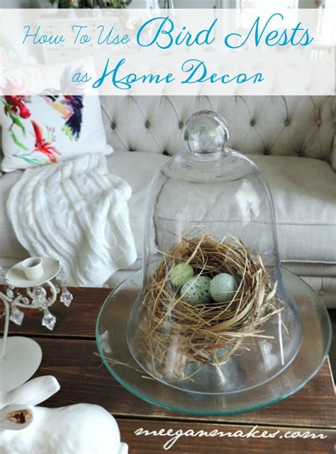Bird Home Decor by How To Use Bird Nests In Home Decor