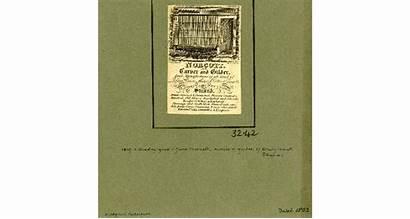 Jane Businesses Norcott Carver Gilder Trade British