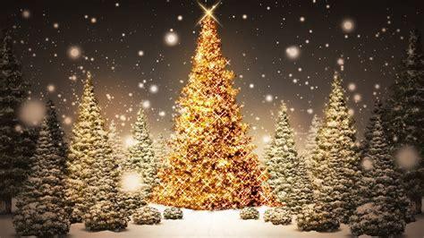 christmas ferrebeekeeper
