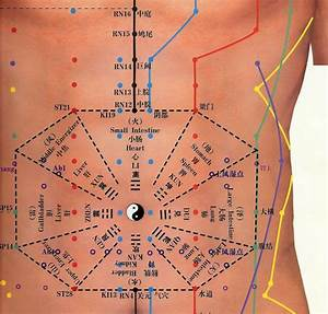 Ear Seed Chart Abdominal Acupuncture Chart Tcm Traditional Chinese