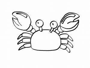 Free coloring pages of little crabs