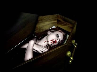 Vampire Vampires Wallpapers Coffin Dark Background Barber