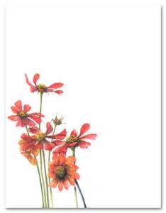 cosmos stationery letterhead myexpression 16929