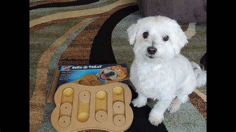 dog puzzle toys seek  treat food puzzle review