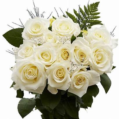 Roses Dozen Order Delivery Valentine Globalrose Rose