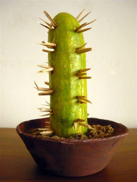 mini cactus simple cinco de mayo craft ideas jumpstart