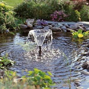 Pompe A Eau Jardin : l 39 entretien du bassin de jardin mois par mois dossier ~ Premium-room.com Idées de Décoration