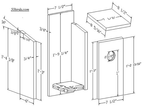 nestbox plans and dimensions for red bellied woodpecker