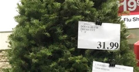 when does costco sell christmas trees costco selling 8 foot trees for 32 popsugar