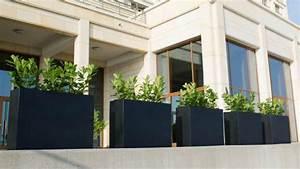 Große Pflanzkübel Winterhart : sichtschutz f r terrassen 5 stilvolle m glichkeiten ~ Michelbontemps.com Haus und Dekorationen