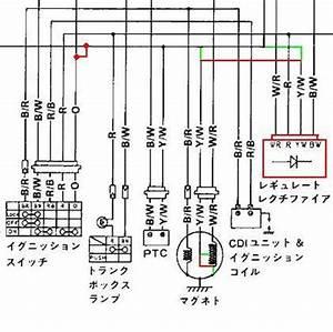 kazuma 110cc wiring diagram dingo go kart wiring diagram With wiring diagrams cdi wiring diagram baja 90cc atv wiring diagram