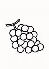 Grapes Coloring Fruit Nutrious Colorluna sketch template