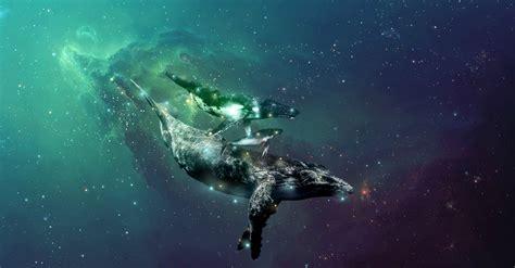 fantastical allure   space whale laphams quarterly