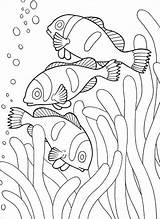 Coloring Pages Fish Printable Clown Clownfish Coloringbay sketch template