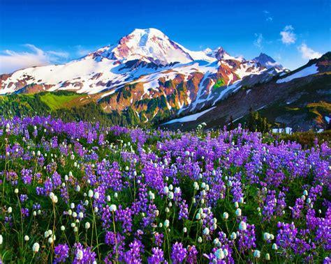 Mount Baker Desktop Background 583118 : Wallpapers13.com