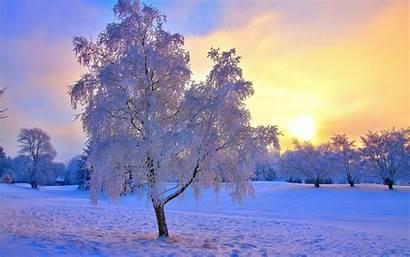 Winter Sun Wallpapers Pixelstalk