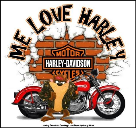 Harley Davidson Meme - 1100 best harley memes toons biker sayings images on pinterest biker sayings biker quotes
