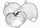 Coloring Onion Onions Library Popular Clipart sketch template