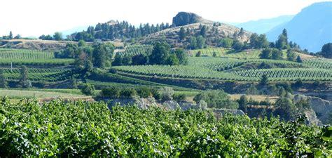 John Schreiner On Wine Naramata Bench 14 Kilometers
