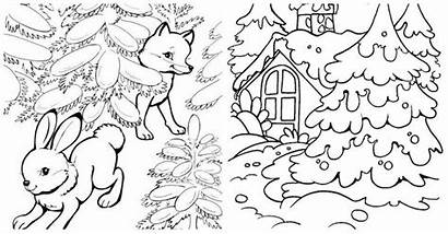 Coloring Winter Forest Landscape Wormwood