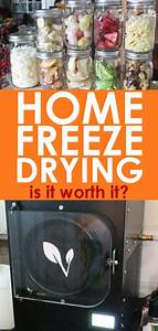 Beginner U0026 39 S Guide To Home Freeze Drying