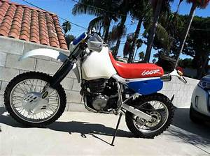 Honda Xl600r  Xr600r Owners Workshop Service Manual 1983