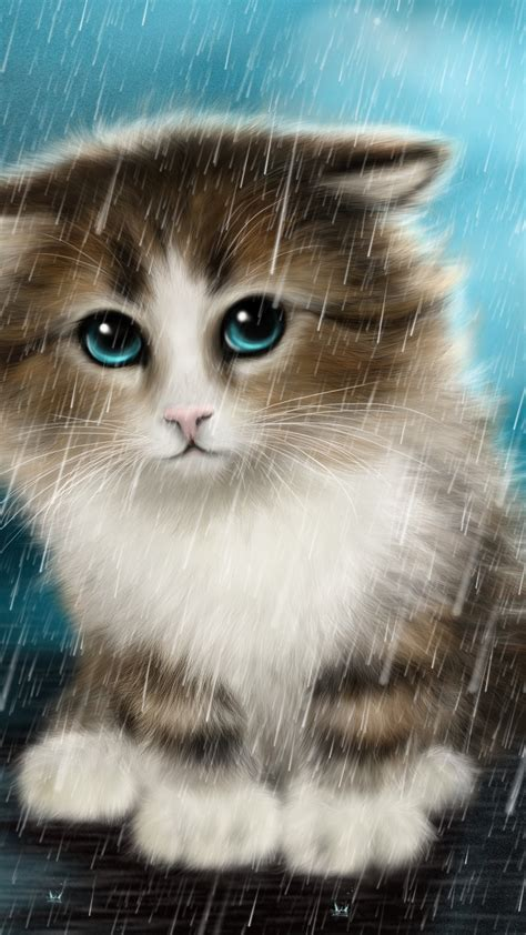 wallpaper cute cat innocent animals  wallpaper