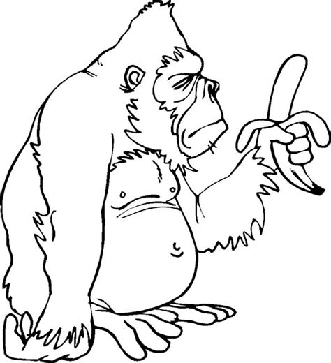 Gorilla Coloring Page Funny Animals Jumbo Grig3org