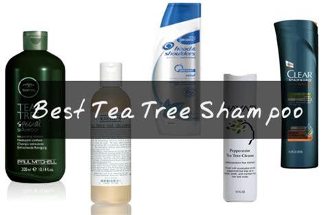 tea tree shampoos  itchy scalp mint tea tree oil